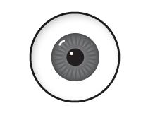 eyes_anim.